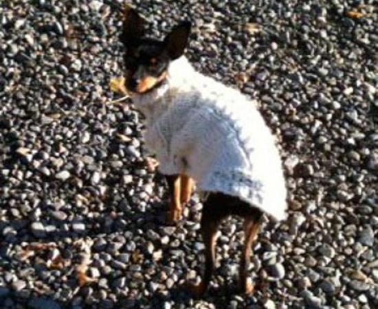 Maggie_Nov2-2011