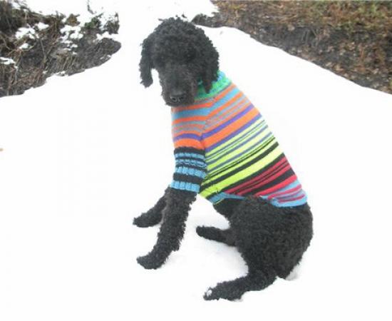 NeviSweater